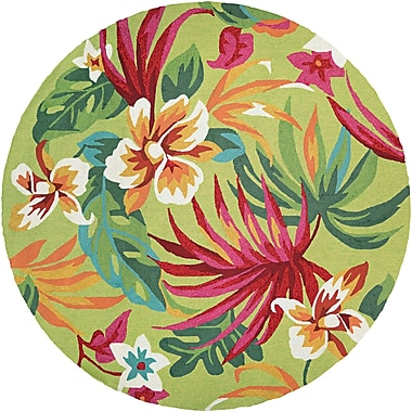Bay Isle Home Amberjack Painted Hand-Woven Fern/Red Indoor/Outdoor Area Rug; Round 7'10''