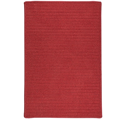 Bay Isle Home Hopseed Hand-Woven Red Indoor/Outdoor Area Rug; 5' x 7'