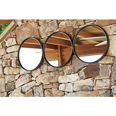 Brayden Studio Burnished Black Metal Wall Mirror