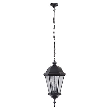 Darby Home Co Lorie 3-Light Outdoor Hanging Lantern; Oiled Gilded Bronze