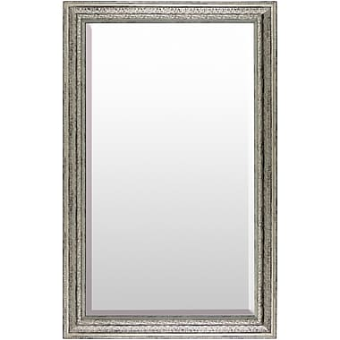 Darby Home Co Rectangle Polystyrene Wall Mirror; Silver