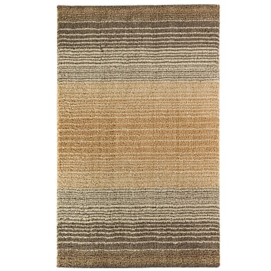 Latitude Run Brano Stripe Shag Birch Beige Area Rug; 8' x 10'