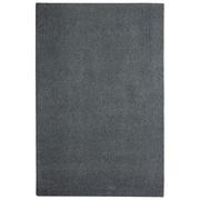 Latitude Run Bettie Hand-Tufted Slate Area Rug; 6' x 9'