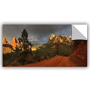 Loon Peak The Play of Light Wall Decal; 12'' H x 24'' W x 0.1'' D