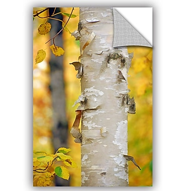 Loon Peak Autumn Birches Wall Decal; 48'' H x 32'' W x 0.1'' D