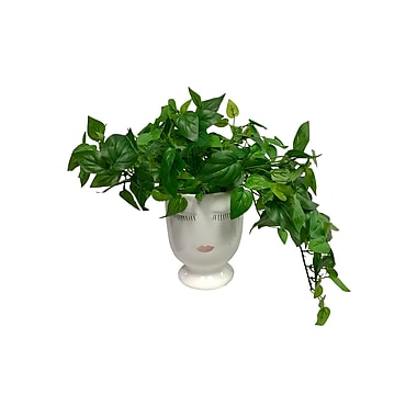 Mercer41 Lush Greenery Celfie Ivy Plant in Pot