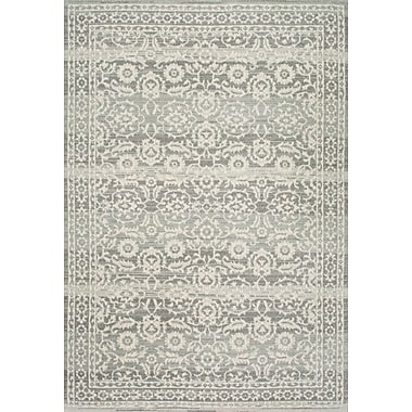 One Allium Way Valois Gray Area Rug; 4' x 6'