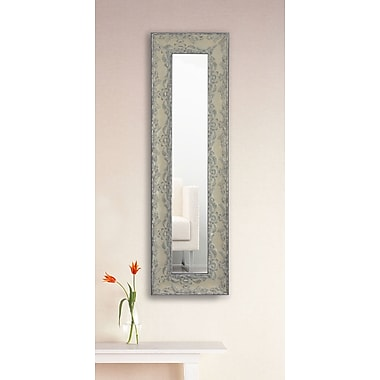 One Allium Way Panel Mirror; 22'' H x 10'' W