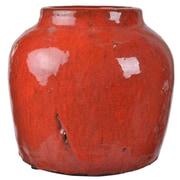 World Menagerie Daxton Ceramic Pot Planter