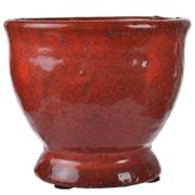 World Menagerie Royce Ceramic Urn Planter