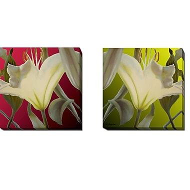 Bloomsbury Market 'Lily' 2 Piece Graphic Art Print Set on Wrapped Canvas; 24'' H x 48'' W