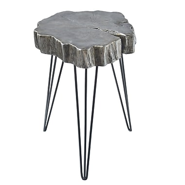Ivy Bronx Buzzard Rustic Iron and Resin Crosscut Tree End Table; Gray