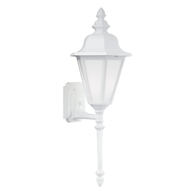 Darby Home Co Palmdale 1-Light Glass Shade Outdoor Wall Lantern; White