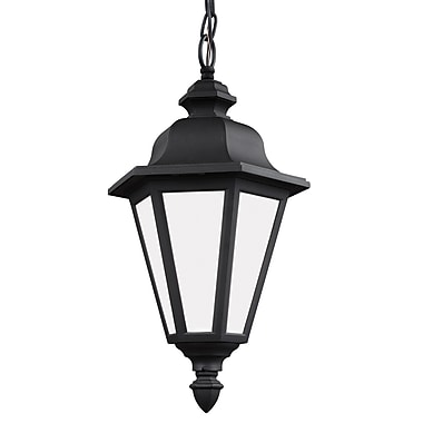 Darby Home Co Palmdale Traditional 1-Light Outdoor Pendant; Black