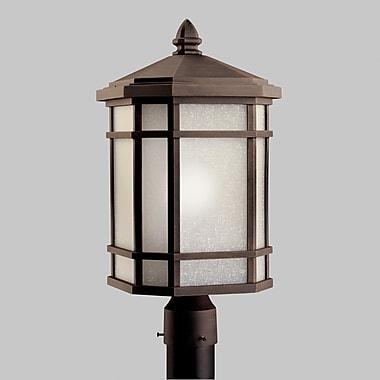 Astoria Grand Chittick Outdoor 1-Light Lantern Head