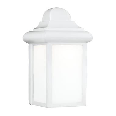 Highland Dunes Khandare 1-Light Outdoor Wall Lantern; White