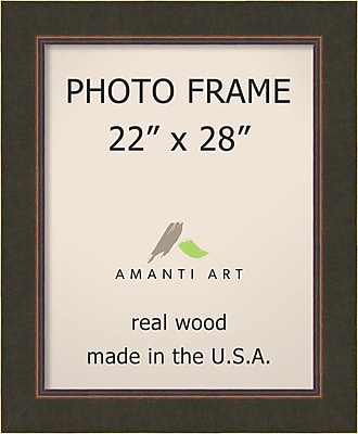 Loon Peak Bourgault Bronze Wood Picture Frame; 22'' x 28''