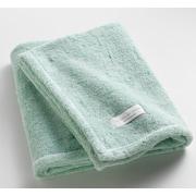 One Allium Way Orchard Ultra Absorbent Bath Towel; Aqua