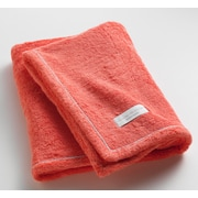 One Allium Way Orchard Ultra Absorbent Bath Towel; Coral