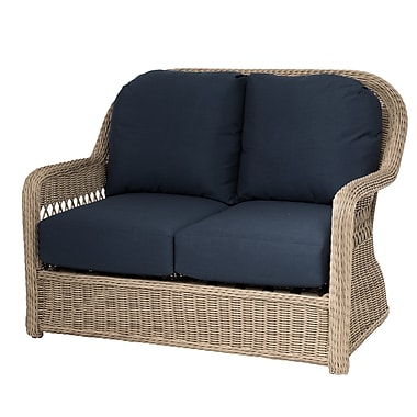 Darby Home Co Barns Loveseat w/ Cushion; Indigo