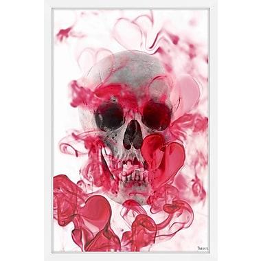Ivy Bronx 'Skull 2' Framed Photographic Print; 24'' H x 16'' W