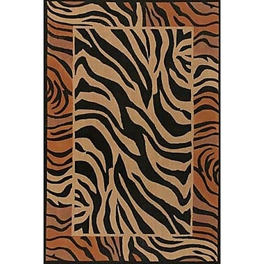 Bloomsbury Market Doctor Phillips Brown/Black Area Rug; 9' x 13'