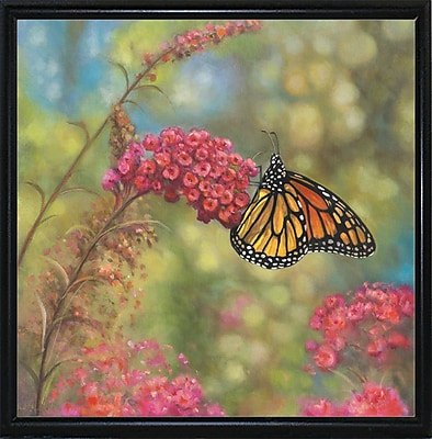 Winston Porter 'Monarch Butterfly' Graphic Art Print; Flat Back Metal Framed
