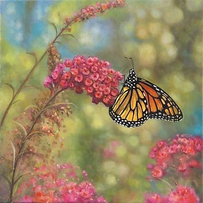 Winston Porter 'Monarch Butterfly' Graphic Art Print; Paper