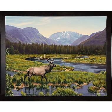Loon Peak 'Meadows of Grand Lake, Colorado' Graphic Art Print; Cafe Espresso Wood Framed Paper