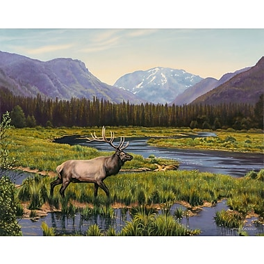 Loon Peak 'Meadows of Grand Lake, Colorado' Graphic Art Print; Rolled Canvas