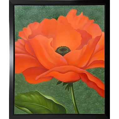 Winston Porter 'Red Poppy' Graphic Art Print; Black Plastic Framed Paper