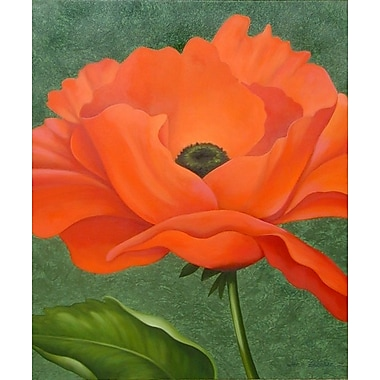 Winston Porter 'Red Poppy' Graphic Art Print; Rolled Canvas