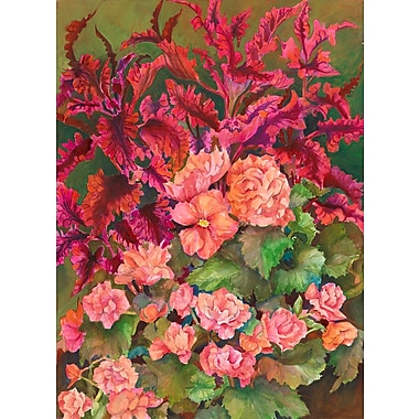 Red Barrel Studio 'Coleus and Begonias' Graphic Art Print; Rolled Canvas