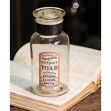 The Holiday Aisle Witch's Brew Toad Decorative Jar