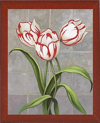 Winston Porter 'Red-Striped Tulips' Print; Red Mahogany Wood Medium Framed Paper