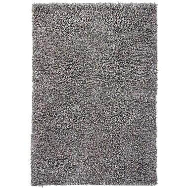 Latitude Run Renald Grey Area Rug; 5' x 7'6''
