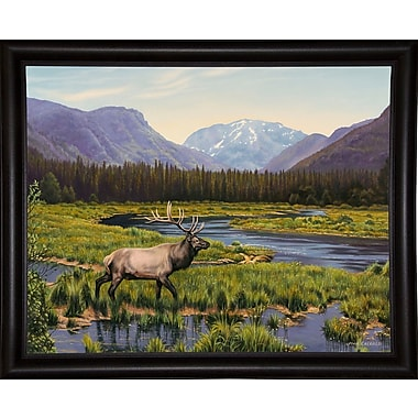 Loon Peak 'Meadows of Grand Lake, Colorado' Graphic Art Print; Bistro Expresso Framed Paper