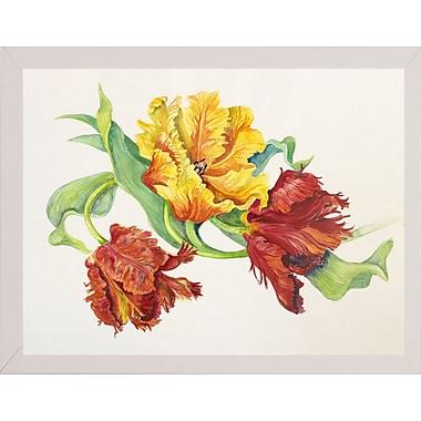 Winston Porter 'Twining Tulips' Print; White Wood Medium Framed Paper