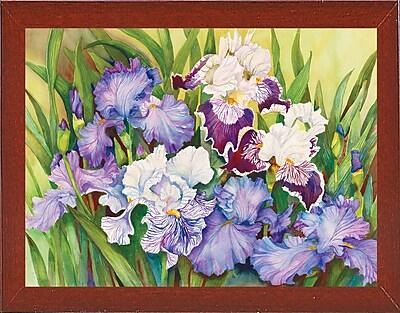 Winston Porter 'Irises' Print; Red Mahogany Wood Medium Framed Paper