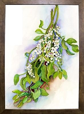 Winston Porter 'Mistletoe' Print; Cafe Mocha Framed Paper