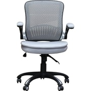 Ebern Designs Balanchine Mesh Office Chair; Silver