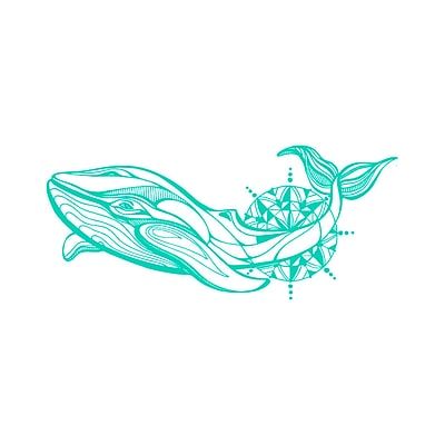Decal House Whale Wall Decal; Mint