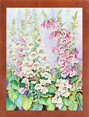 Winston Porter 'Summer Foxglove' Print; Canadian Walnut Wood Medium Framed Paper