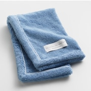 One Allium Way Orchard Ultra Absorbent Hand Towel; Blue