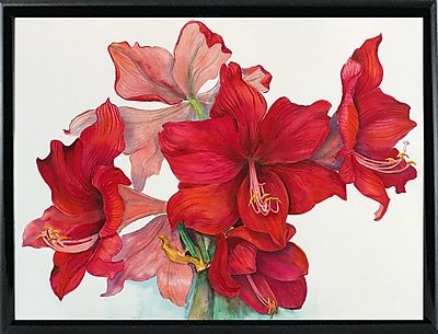 The Holiday Aisle 'Holiday Amaryllis' Print; Rolled Canvas