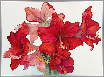 The Holiday Aisle 'Holiday Amaryllis' Print; White Metal Framed Paper