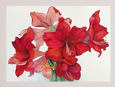 The Holiday Aisle 'Holiday Amaryllis' Print; White Wood Medium Framed Paper