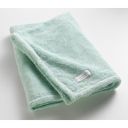One Allium Way Orchard Ultra Absorbent Bath Sheet; Aqua