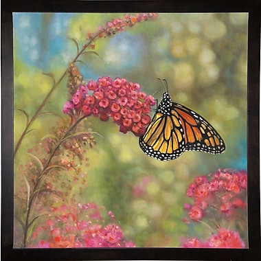 Winston Porter 'Monarch Butterfly' Graphic Art Print; Cafe Espresso Wood Framed Paper