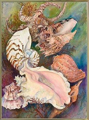Highland Dunes 'Collected Shells' Print; Gold Metal Framed